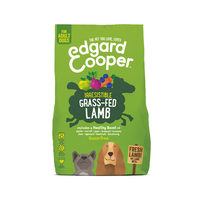 Edgard & Cooper Adult - Lamm