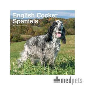 Product afbeelding van English Cocker Spaniel Kalender 2019