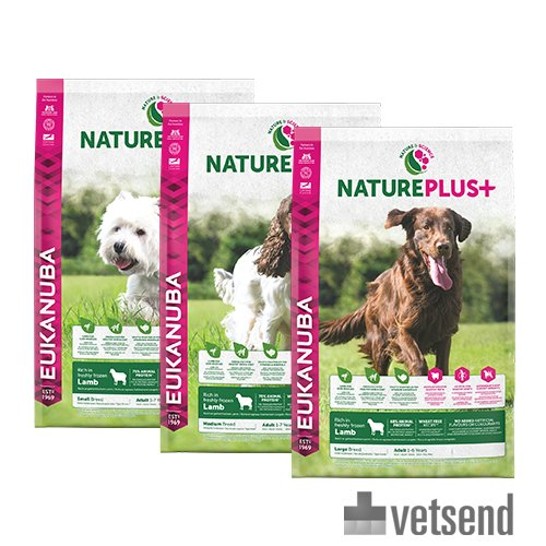 Free Online Veterinary Advice Dogs