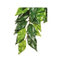 Exo Terra Ficus Plant