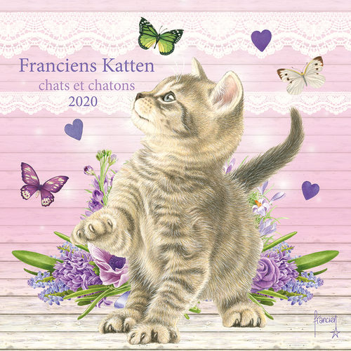Francien Chats et Chatons Calendrier 2020