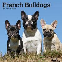 French Bulldogs Kalender 2020