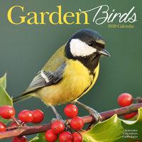 Garden Bird Kalender 2020