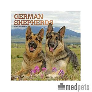 Product afbeelding van German Shepherd Kalender 2019