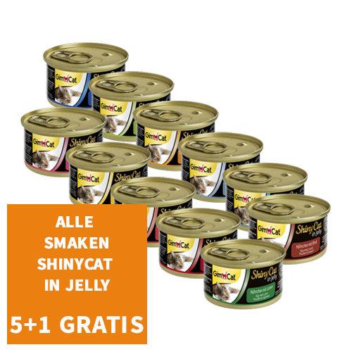 GimCat ShinyCat in Jelly