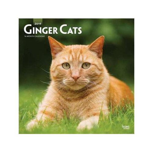 Ginger Cats Kalender 2019