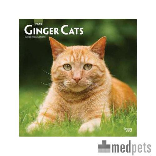 Product afbeelding van Ginger Cats Kalender 2019