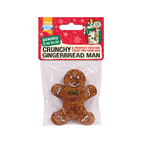 Good Boy Crunchy Gingerbread Man