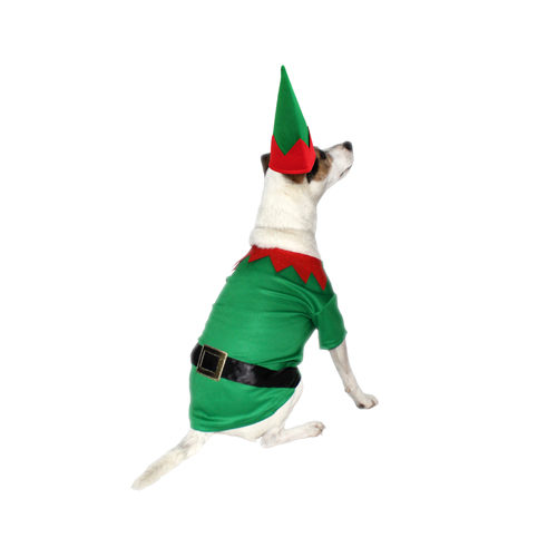 Good Boy Elf Costume
