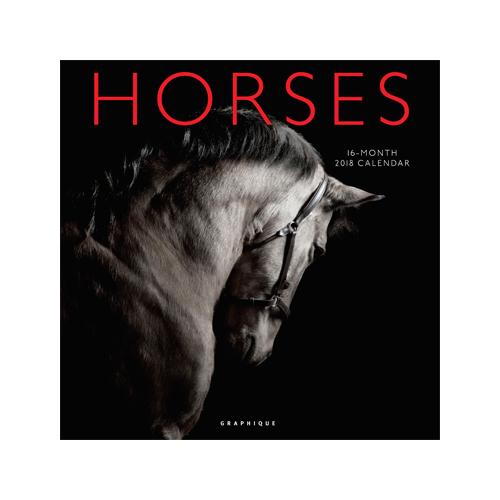 Graphique Horses Kalender 2018