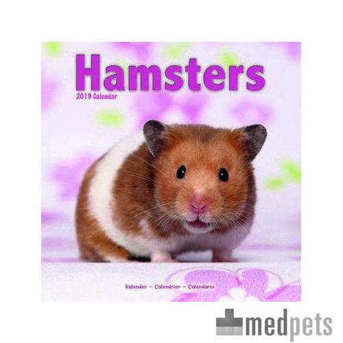 hamsters kalender 2019 nagetier bestellen. Black Bedroom Furniture Sets. Home Design Ideas