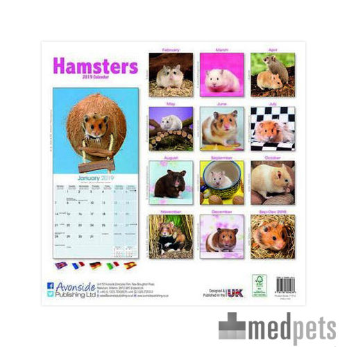 hamsters kalender 2019 knaagdier bestellen. Black Bedroom Furniture Sets. Home Design Ideas