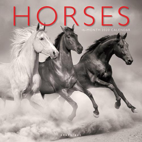 Horses Kalender 2020