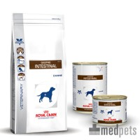 Royal Canin Gastro Intestinal Chien