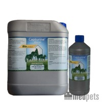 Capturine Horse Bio Cleaning