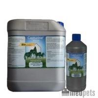 Capturine Horse Bio Cleaning
