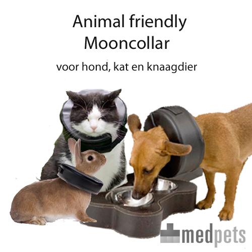 Animal Friendly Mooncollar