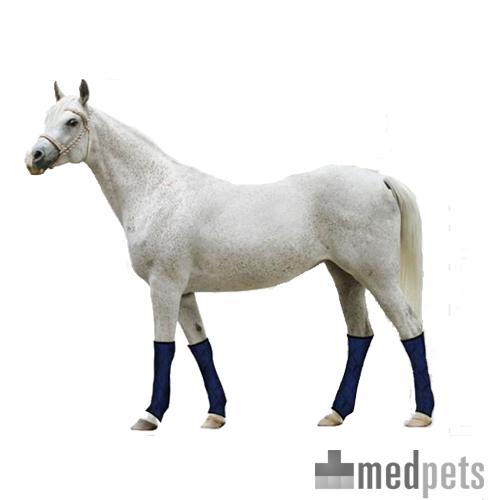 Aqua Coolkeeper beenkoelers voor paarden