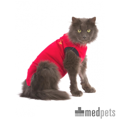 Medical Pet Shirt kat