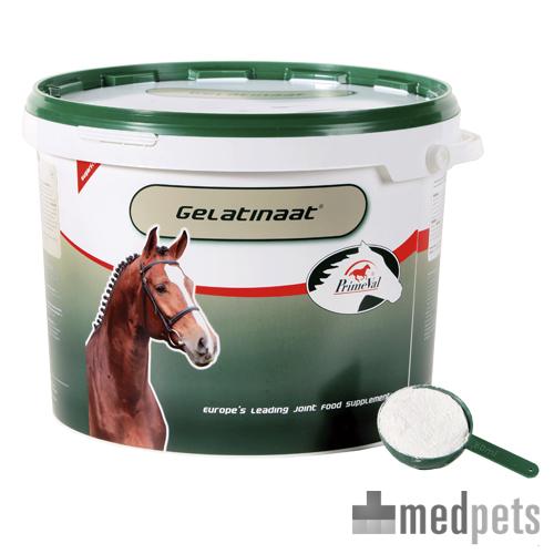 PrimeVal Gelatinat Pferd