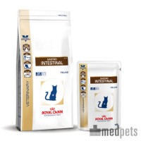 Royal Canin Gastro Intestinal Katze