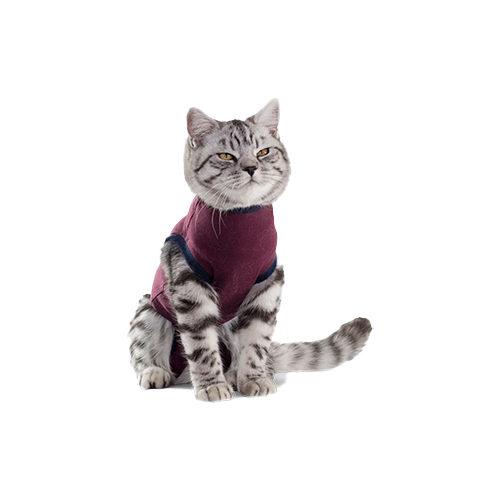 Jacketz Medical Body Suit für Katzen