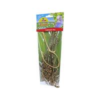 JR Farm Parakeet Linseed Flax