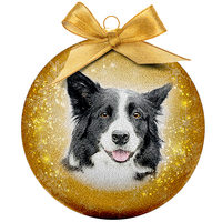 Kerstbal Frosted - Border Collie