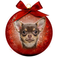 Weihnachtskugel Frosted - Chihuahua
