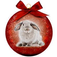 Weihnachtskugel Frosted - Kaninchen