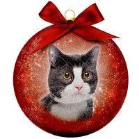 Weihnachtskugel Frosted - Schwarzweiße Katze