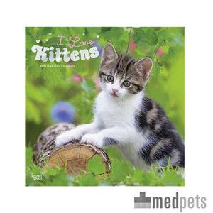 Product afbeelding van Kittens I Love Kalender 2019