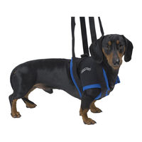 Kruuse Walkabout Lifting Harness