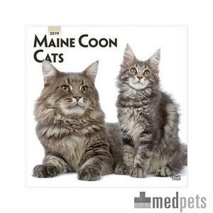 Product afbeelding van Maine Coon Kalender 2019
