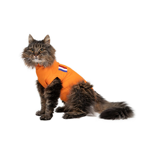 Medical Pet Shirt Kat Oranje