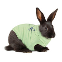 Medical Pet Shirt Kaninchen