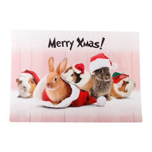 Merry Pets Kerst Placemat Konijn & Cavia
