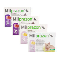 Milprazon Katze