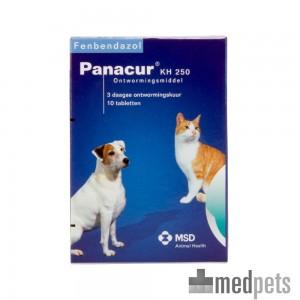 Produktbild von Panacur Hund Katze