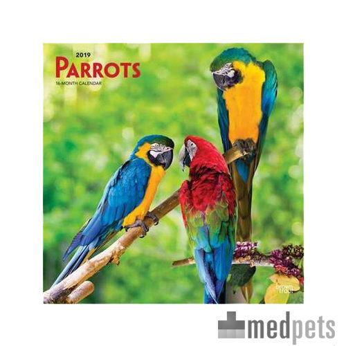 parrots kalender 2019 vogel bestellen. Black Bedroom Furniture Sets. Home Design Ideas