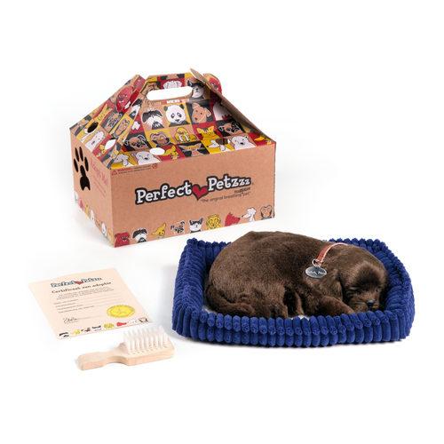 Perfect Petzzz Soft brauner Labrador