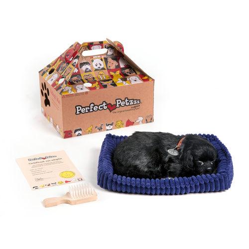 Perfect Petzzz Soft schwarzer Labrador
