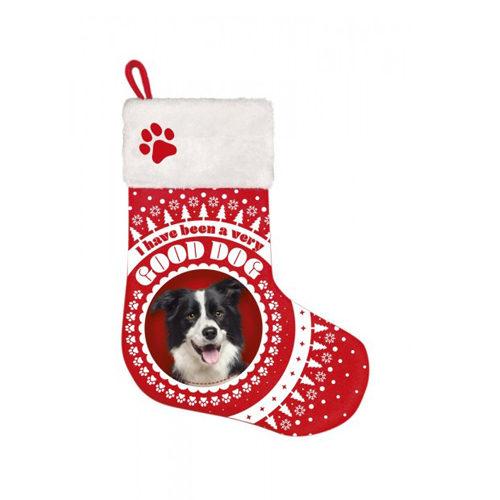 Plenty Gifts - Weihnachtssocken Border Collie