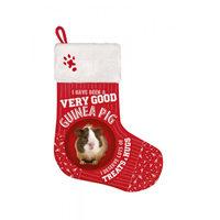 Plenty Gifts - Weihnachtsstrumpf Meerschweinchen