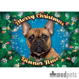 Product afbeelding van Plenty Gifts - Xmas Placemat Franse Bulldog