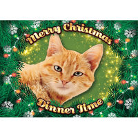 Plenty Gifts - Xmas Placemat Red Cat