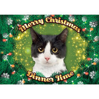 Plenty Gifts - Xmas Placemat Black and White Cat