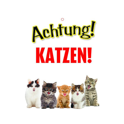 Plenty Gifts Warnschild - Katzen