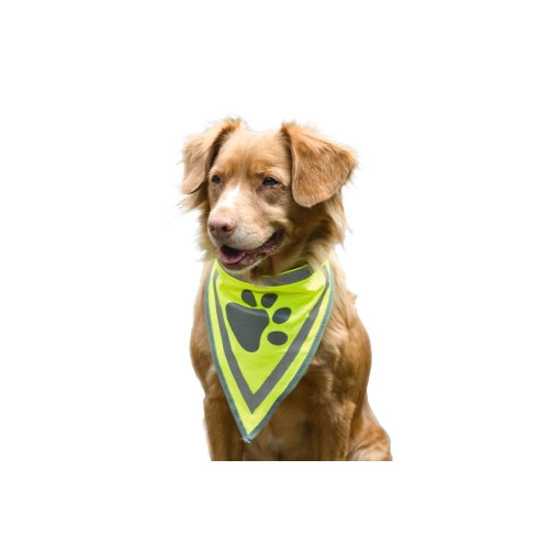 Beeztees Reflecterende Bandana