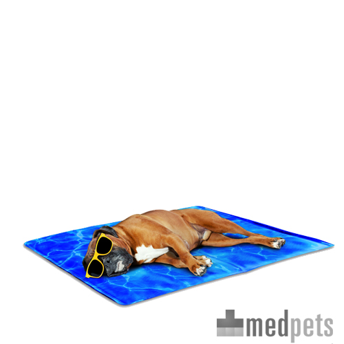 Afp Chill Out Always Cool Dog Mat Bestellen